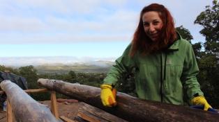 limpiando maderas